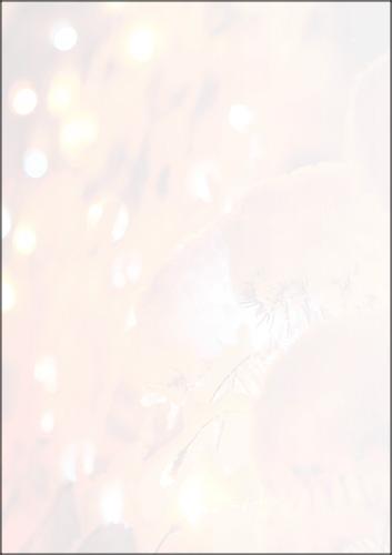 weihnachtsbriefpapier tannenbaum im lichtermeer a4. Black Bedroom Furniture Sets. Home Design Ideas