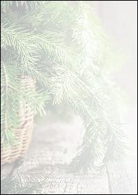 weihnachtsbriefpapier tannenzweige im korb a4. Black Bedroom Furniture Sets. Home Design Ideas